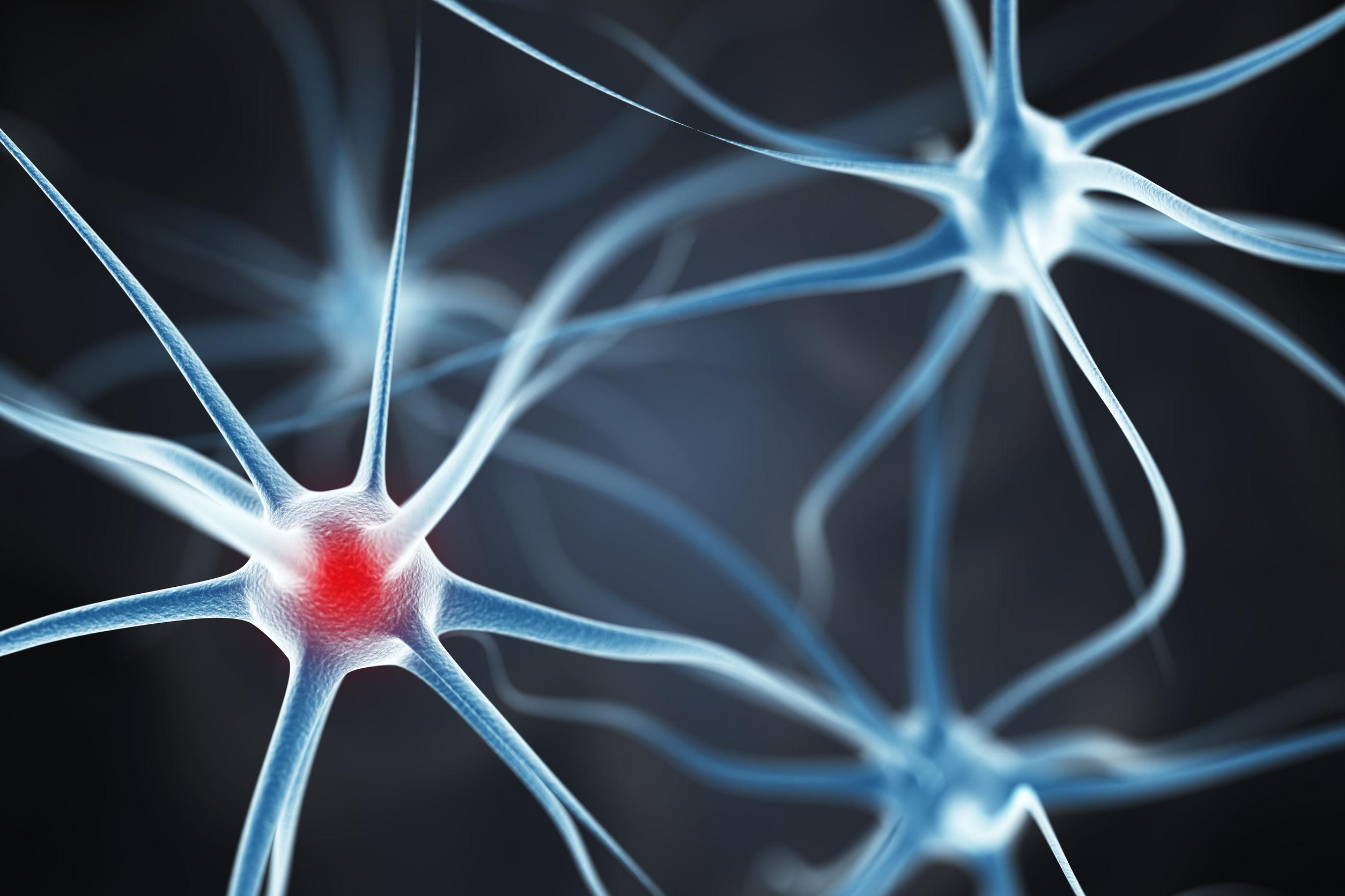 Bilan compétences lyon -Neurones